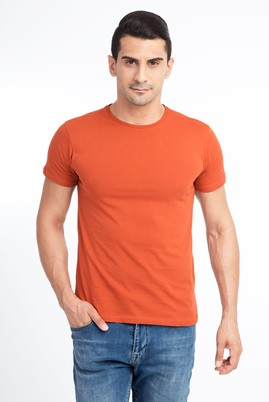 Erkek Giyim - KİREMİT L Beden Bisiklet Yaka Slim Fit Tişört