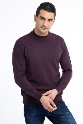 Erkek Giyim - Mor L Beden Bato Yaka Triko Kazak