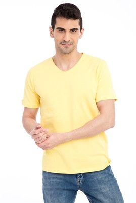 Erkek Giyim - Sarı L Beden V Yaka Nakışlı Regular Fit Tişört