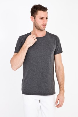 Erkek Giyim - ANTRASİT XXL Beden Bisiklet Yaka Slim Fit Tişört