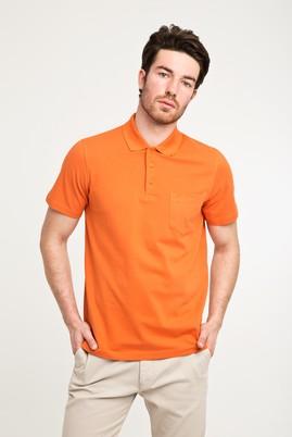 Erkek Giyim - BAL KABAĞI L Beden Polo Yaka Düz Regular Fit Tişört