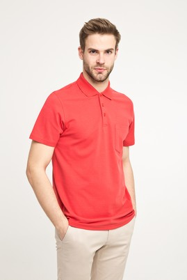 Erkek Giyim - KOYU NAR ÇİÇEĞİ L Beden Polo Yaka Düz Regular Fit Tişört