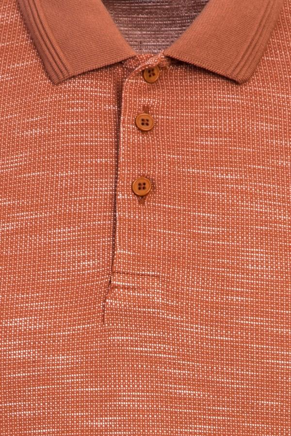 Polo Yaka Desenli Regular Fit Tişört