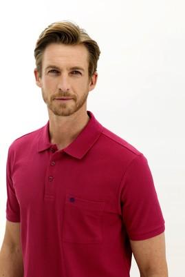 Erkek Giyim - VİŞNE 3X Beden Polo Yaka Regular Fit Tişört